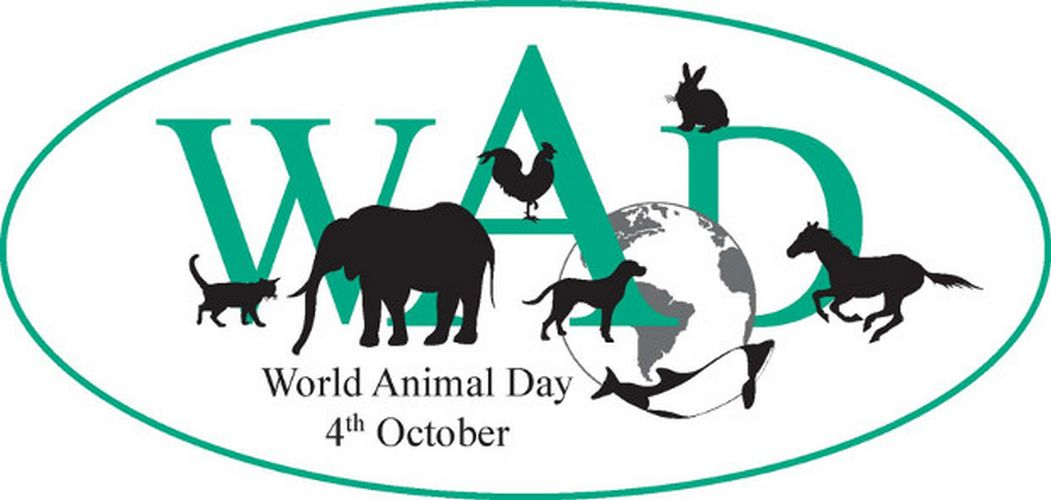 World Animal Day top
